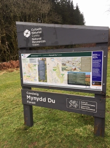 Below Mynydd Du Forest